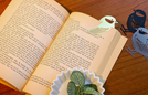 torico_bookmark